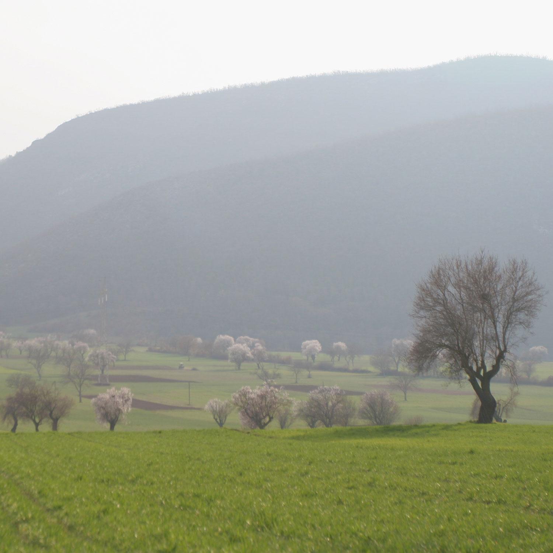 Le plateau de Navelli, Abruzzes