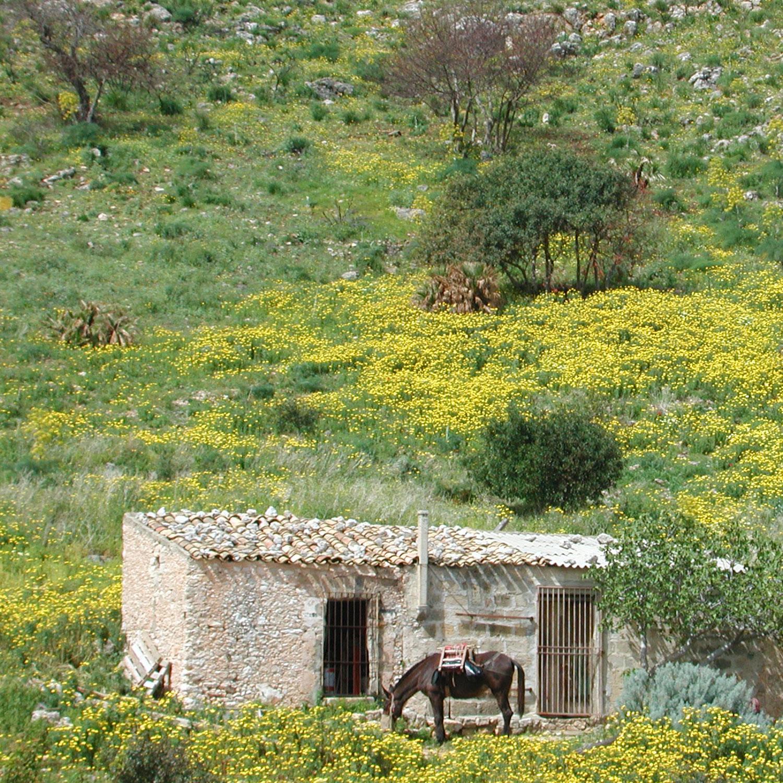 Réserve naturelle dello Zingaro