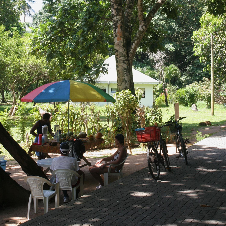 Touristes à vélo devant un stand de jus de fruits, île de La Digue (Seychelles)