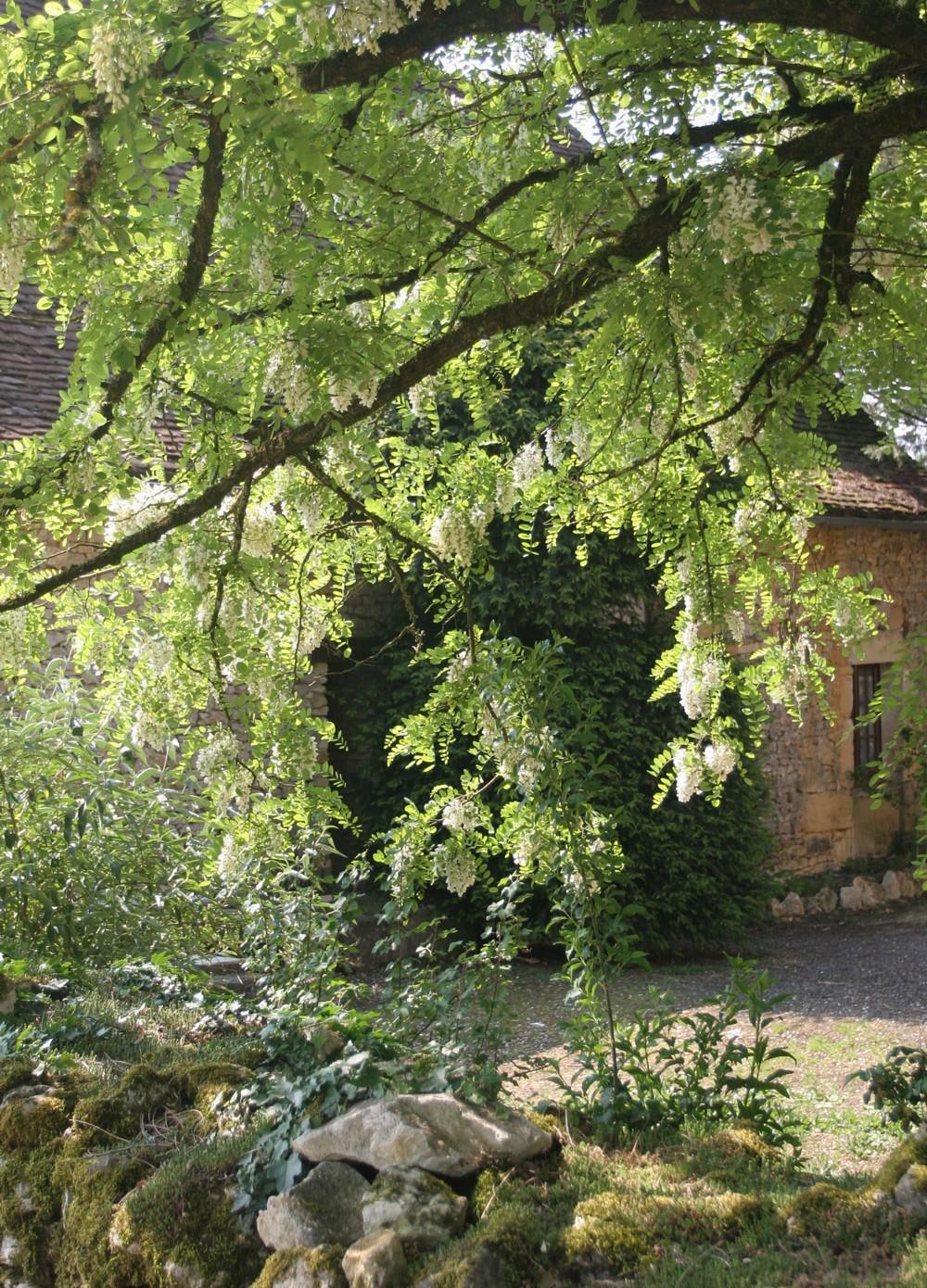Maison du Périgord noir