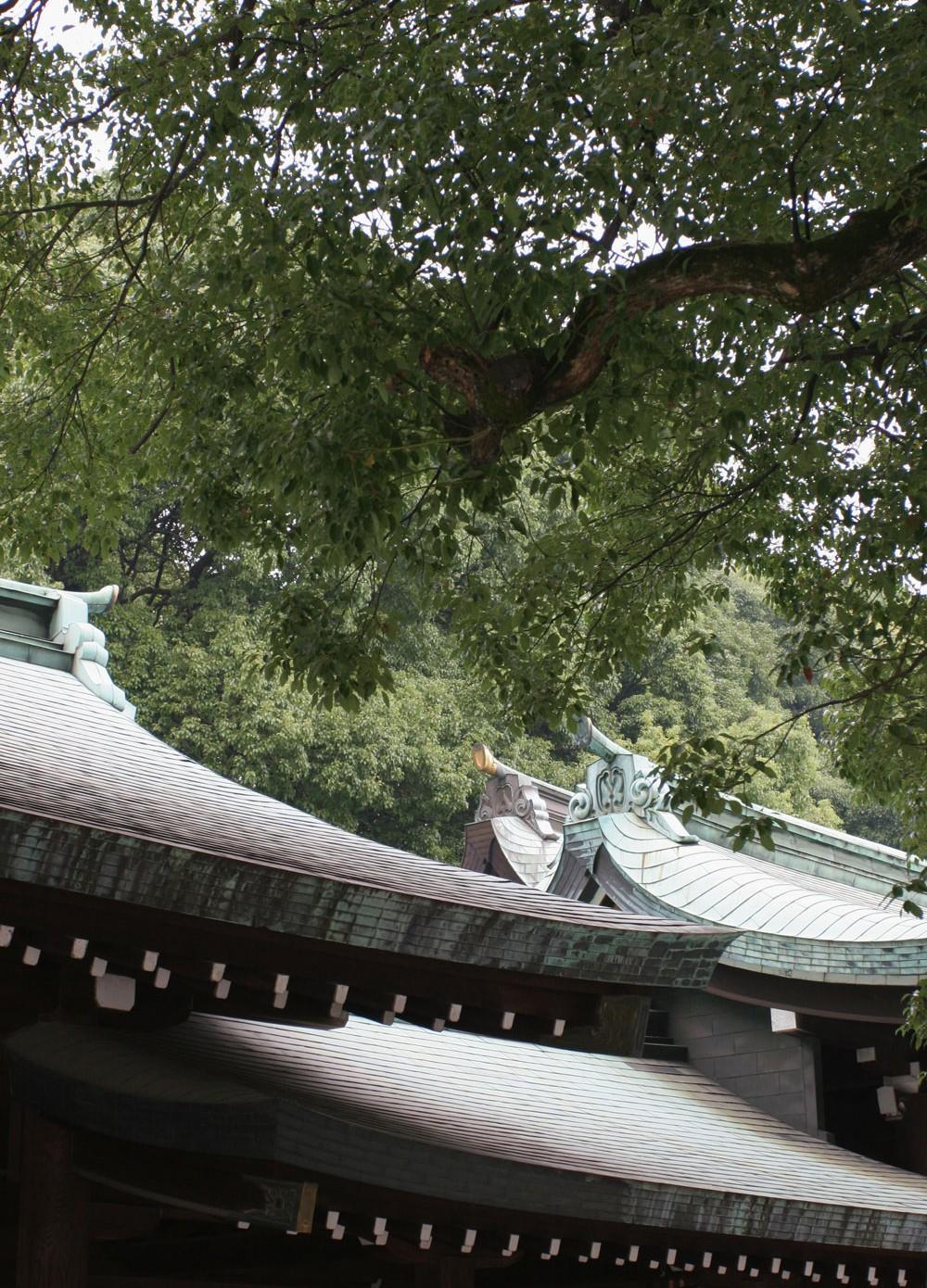 Toitures du sanctuaire Meiji de Tokyo