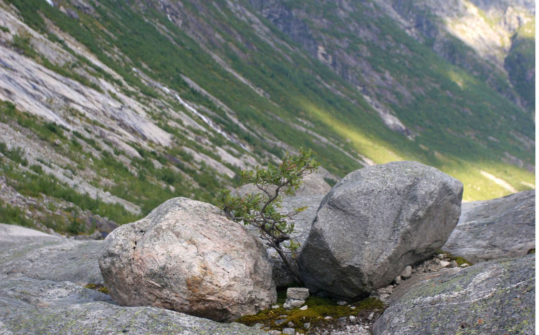 Abrisseau, vallée de Jostedøla