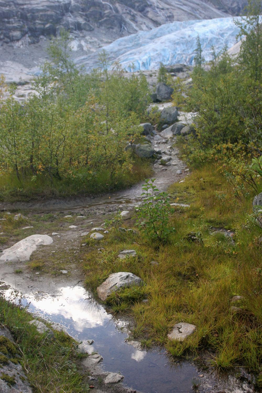 Paysage au pied du glacier de Nigardsbreen
